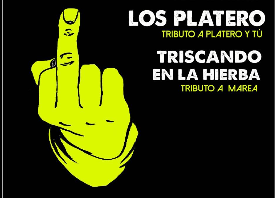 """Festival de Tributos """"HAY POCO ROCK & ROLL"""", tributo a Extremoduro, Los Platero y Marea – 05 de Junio 2015 – Teruel"""